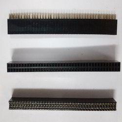 40x2- Burg- Strip- Female
