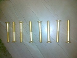 Brass Fastener Screw
