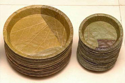 Leaf Buffet Plate