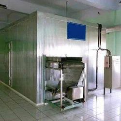 IQF Freezer Peas Plant
