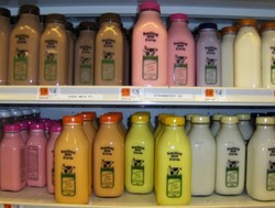 Flavors for Flavored Milk