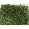 Natureturf- Artificial Grass