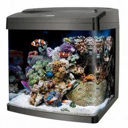 fish tank dealers