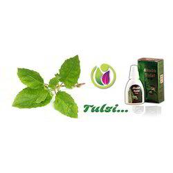 Tulsi Herbal Medicine