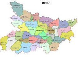 Pharmaceutical Marketing Service in Bihar