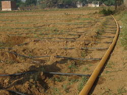 HDPE Drip Irrigation In Flexible Pattern