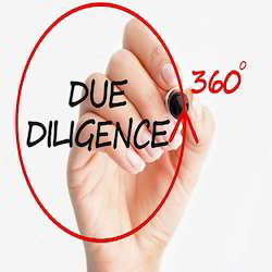 Due Diligence Review Service