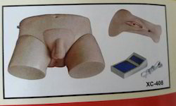 Electronic Urinary Model