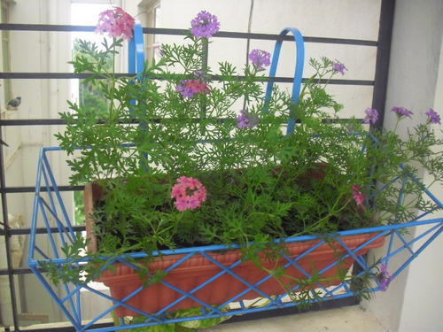 shelterness ideas a on cool space save planter some balcony the and hung railing to creative planters is idea