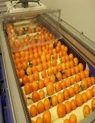 Orange Juice Processing Machinery