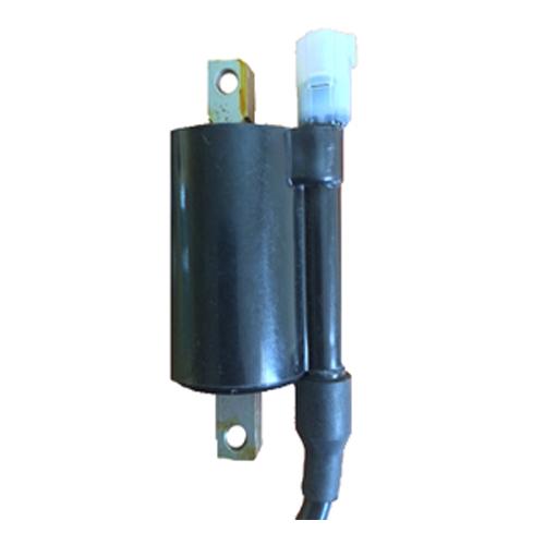 Bajaj 3W 4S Ignition Coil