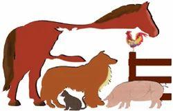 Veterinary Franchisee in Himachal Pradesh