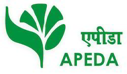 APEDA Certification Process