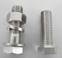 SS 316 Bolt Nut & Washer