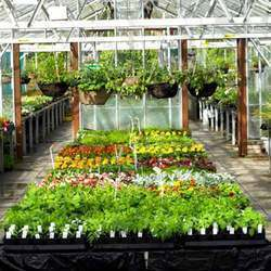 Landscaping & Horticulture Services