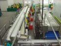 Frozen Fruit Processing Machinery