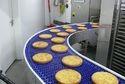 Food Processing Industry Conveyor