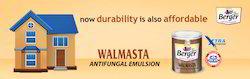 Walmasta Water Based Paint