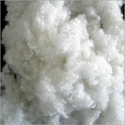 Polyester Fibre