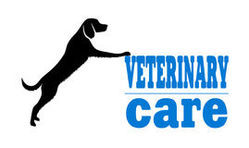 Veterinary Franchise in Nagaland