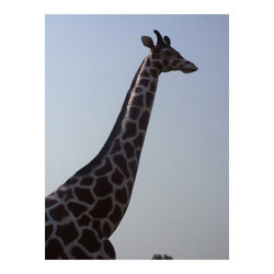 FRP Giraffe