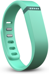 Fitbit Flex Fitness Wrist Band