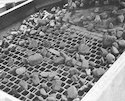 Stone Crusher Screen