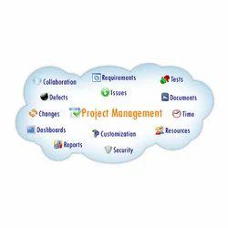 Project Management Software Services