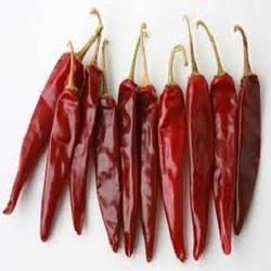 Lal Mirch/ Red Chili