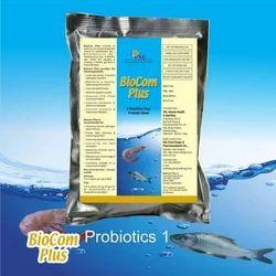 Aquaculture Probiotics