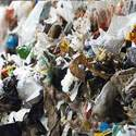 Municipal Solid Waste Sampling