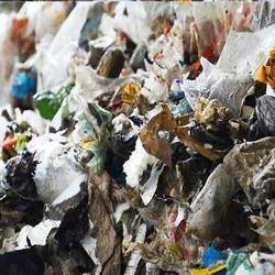 Municipal Solid Waste Sampling Services