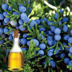 Soluble Juniper Berry Oil