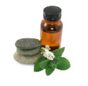 Peppermint Oil (Mentha Piperita)