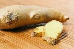 ginger in brine