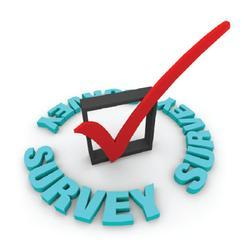 Survey Projects