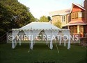 Stylish Raj Tent
