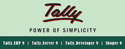 tally service tally software