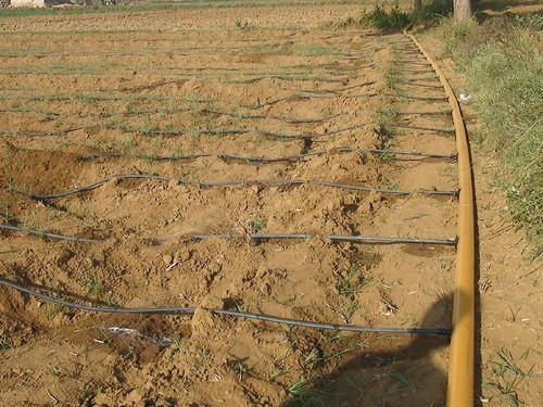 Drip Irrigation - Drip Irrigation Flexible Pipe ...
