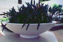 Bowl FRP Planter