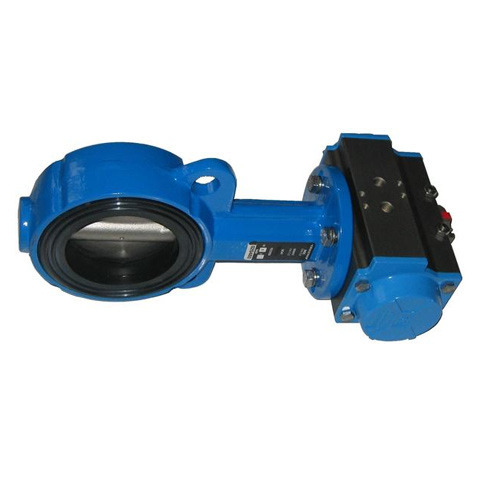 Butterfly Valves - CI Butterfly Valves Manufacturer from Ahmedabad