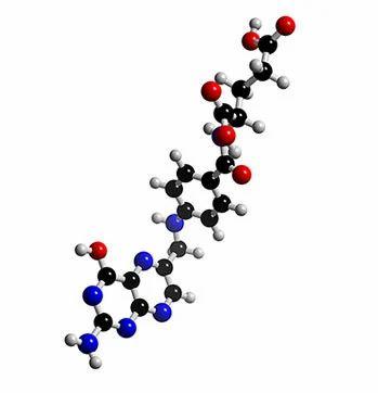 Folic Acid Vitamin B9