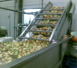 Guava Processing Plant & Machinery