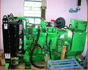 Biogas Generator