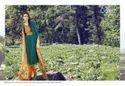 Ganga Graces Ladies Apparel