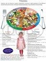 Nutrition Diet Charts