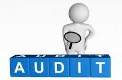 Customer Audit Consultant