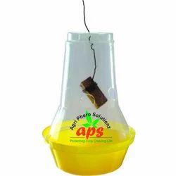 Budgetary Fruit Fly Trap