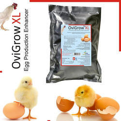 Egg Production Enhancer Feed Supplement