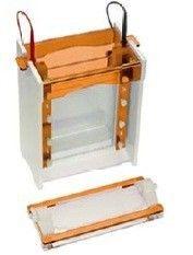 ocean life science maxi vertical gel electrophoresis sy
